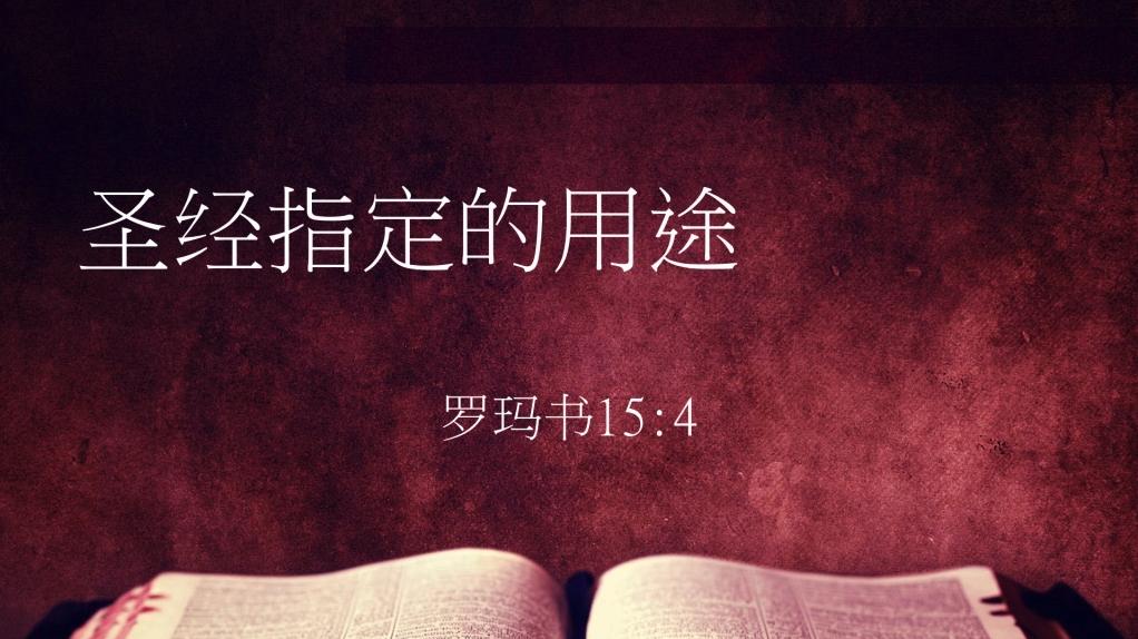 圣经指定的用途